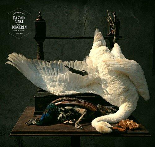 Jan Weenix by Darwin, Sinke & van Tongeren