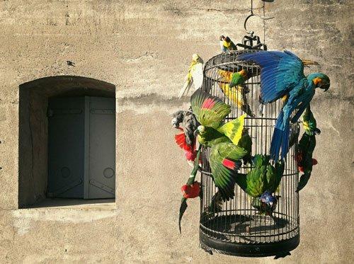 Birdcage by Darwin, Sinke & van Tongeren