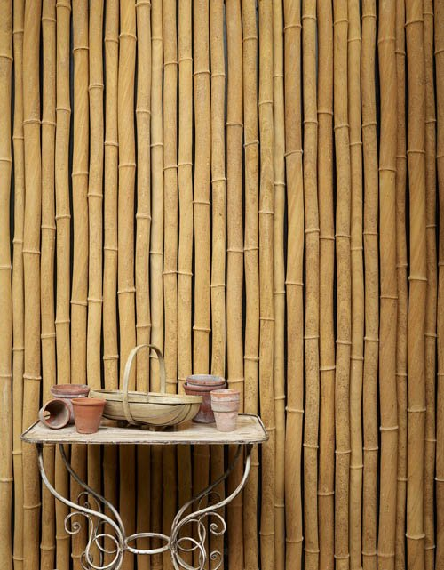 Sandstone bamboo from Lapicida
